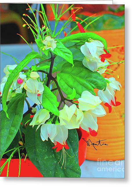 Bleeding Heart II Greeting Card