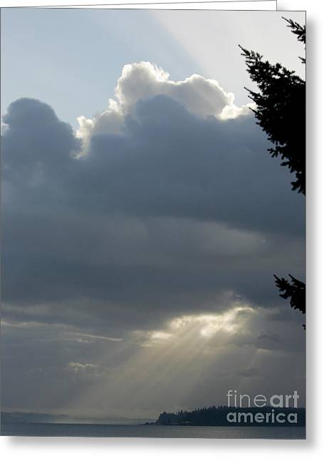 Blessings On Camano Island Greeting Card by Sandy Byers