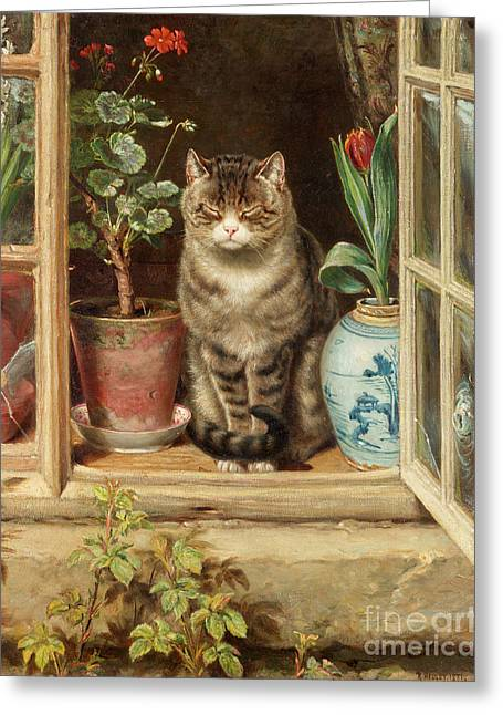 Blinking In The Sun Greeting Card by Ralph Hedley
