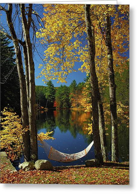 Bliss - New England Fall Landscape Hammock Greeting Card by Jon Holiday