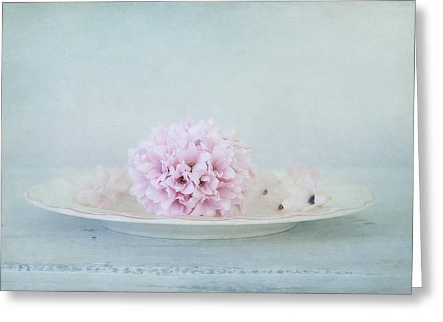 Blissful Hyacinth Greeting Card by Kim Hojnacki
