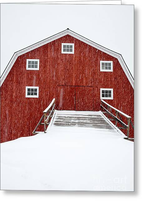 Blizzard At The Old Cow Barn Greeting Card