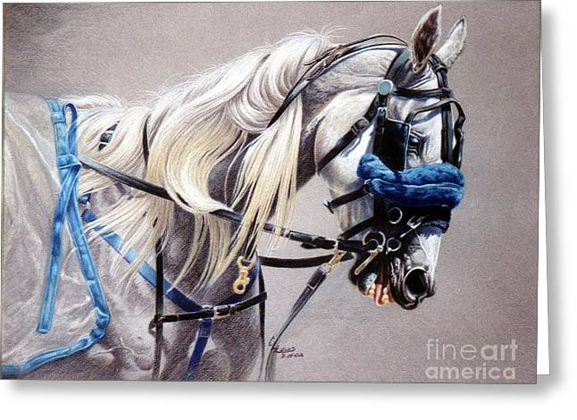 Blizzard Babe Greeting Card by Carrie L Lewis