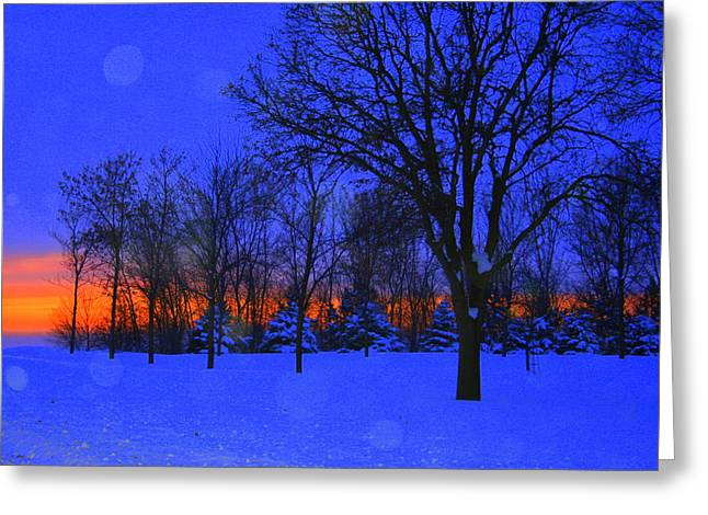 Blizzard Blues 2 Greeting Card by Julie Lueders