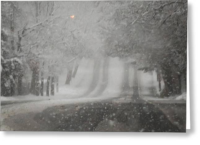 Blizzard Road Greeting Card by Terry DeLuco