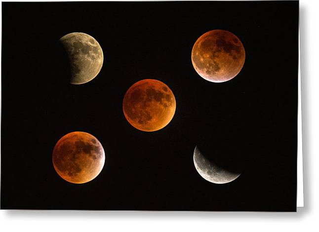 Blood Moon Eclipse Compilation Greeting Card
