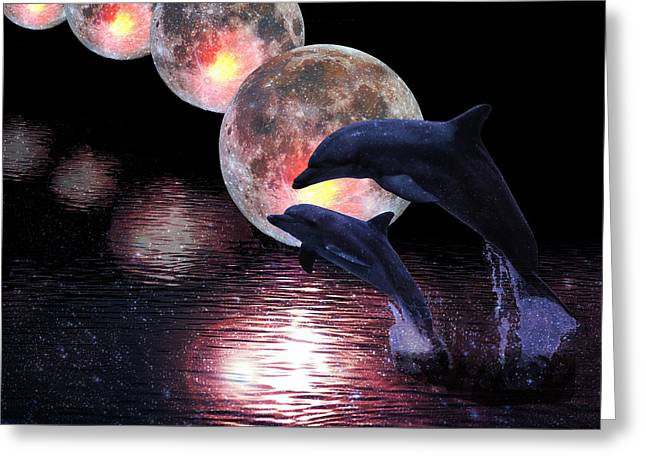 Dolphins In The Moonlight Greeting Card