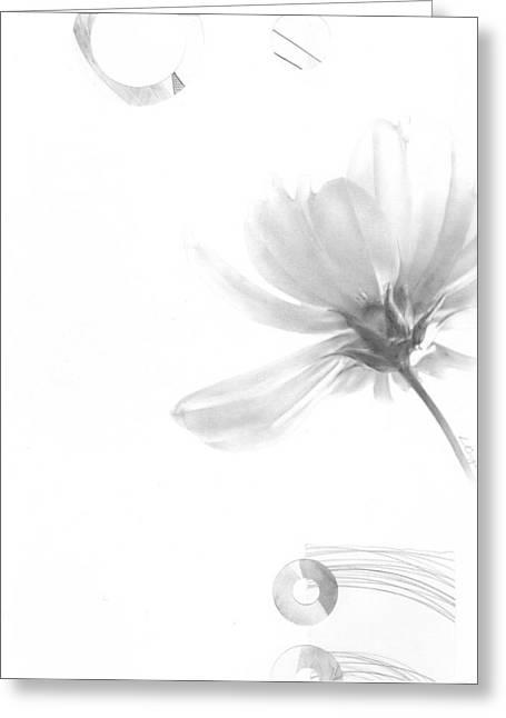 Bloom No. 5 Greeting Card