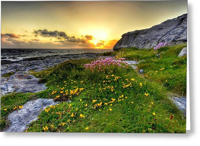 Blooming Burren Greeting Card