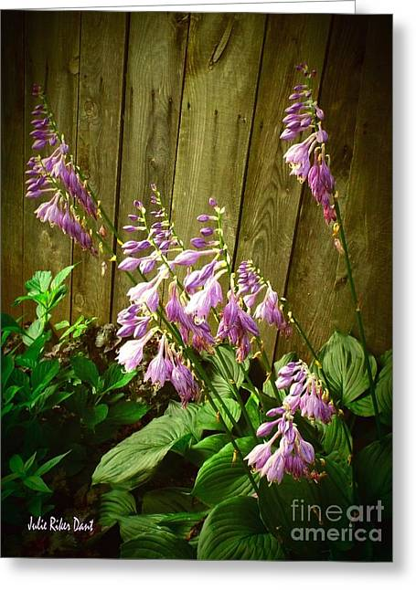 Blooming Hostas Greeting Card by Julie Dant