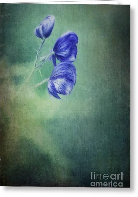 Blooming In The Dark Greeting Card