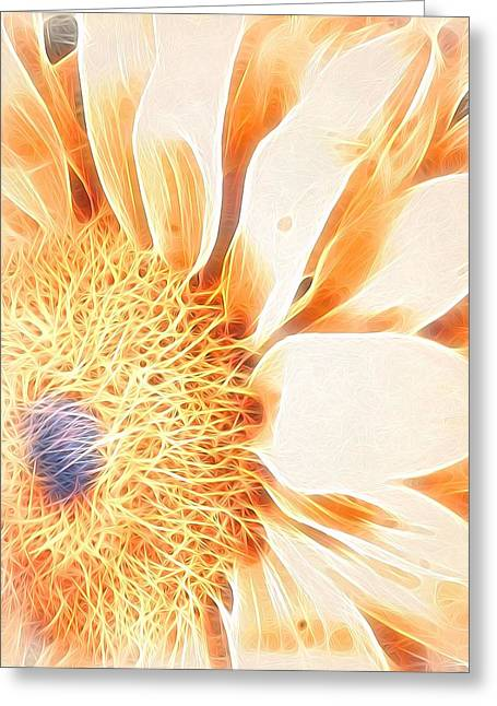 Bloomlit Greeting Card