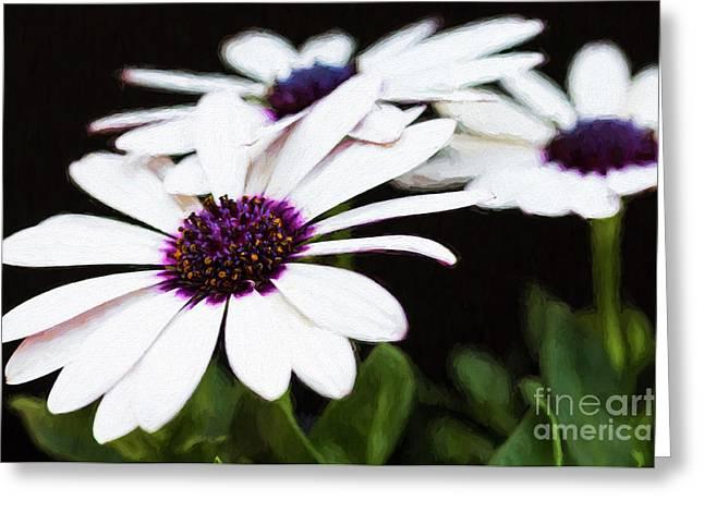 Blooms Of Three Greeting Card by Lori Dobbs