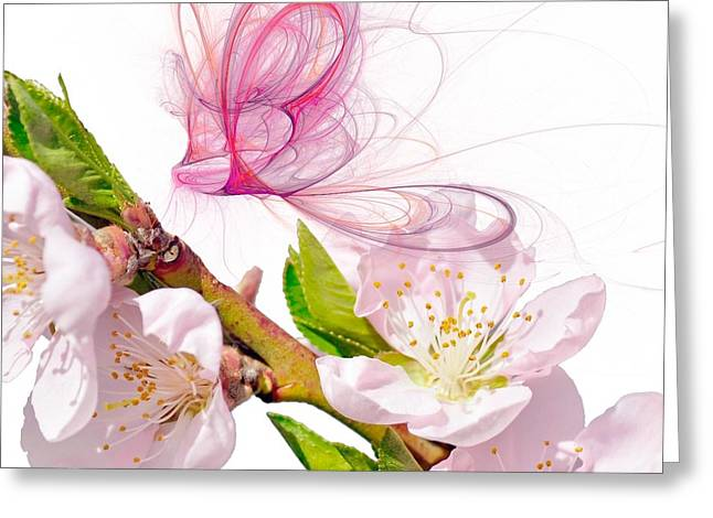 Girlie Greeting Cards - Blossom and Butterflies Greeting Card by Sharon Lisa Clarke