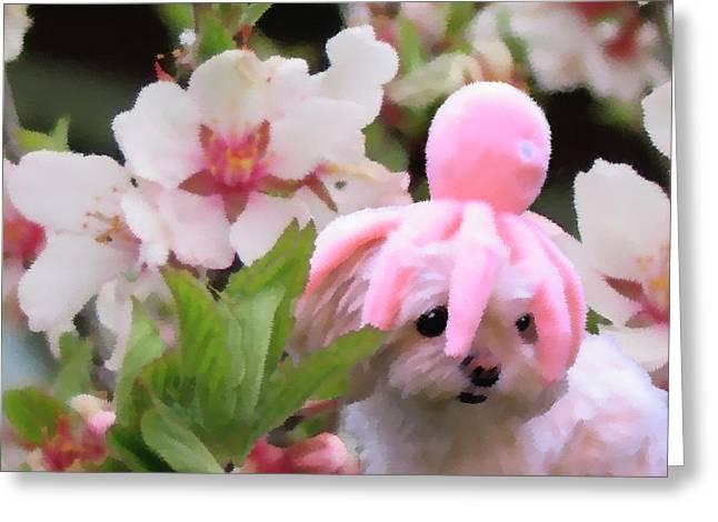 Blossom - Impressionist Maltese Dog Portrait Greeting Card by Rayanda Arts