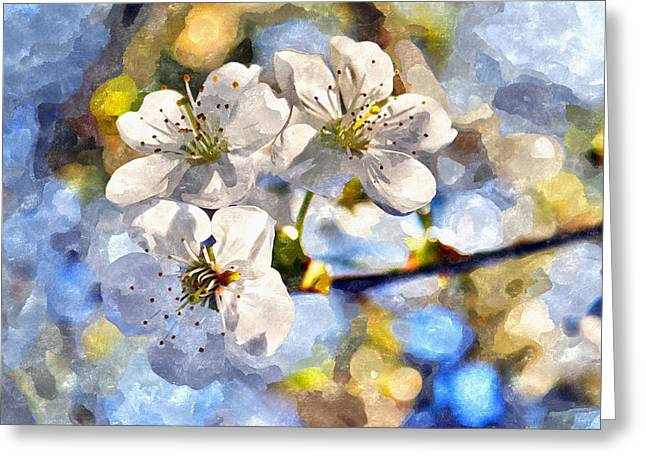 Fruit Tree Art Greeting Cards - Blossoming cherry and morning sunlight watercolor Greeting Card by Aleksandr Volkov