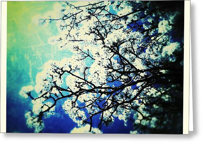 Blossoming Greeting Card by Christine Paris