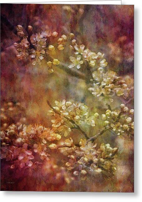 Blossoms 9664 Idp_2 Greeting Card