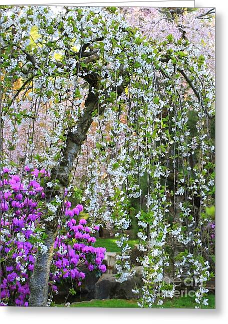 Blossoms Galore Greeting Card