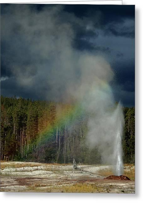 Blow Hole Rainbow Greeting Card