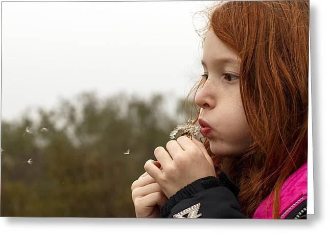 Blowing Dandelions Greeting Card