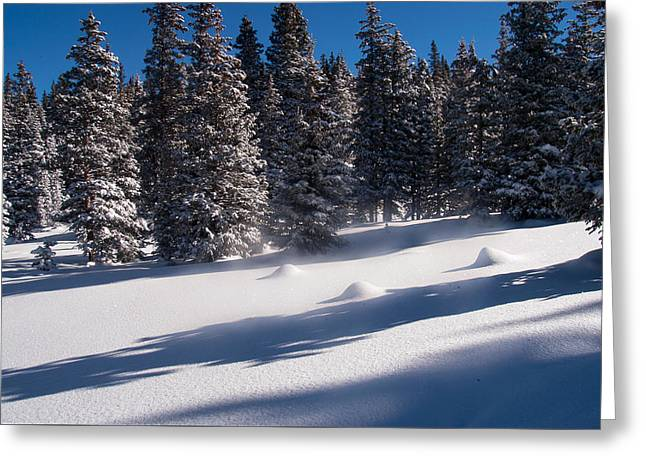 Greeting Card featuring the photograph Blowing Snow On Top by Monte Stevens
