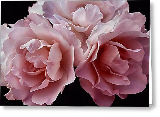 Blowsy Roses Greeting Card
