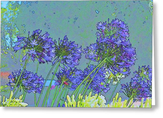 Blue Agapanthus Flowers Bright Abstract Greeting Card