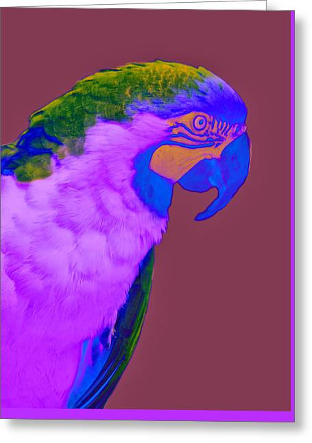 Greeting Card featuring the photograph Blue And Gold Macaw Sabattier by Bill Barber
