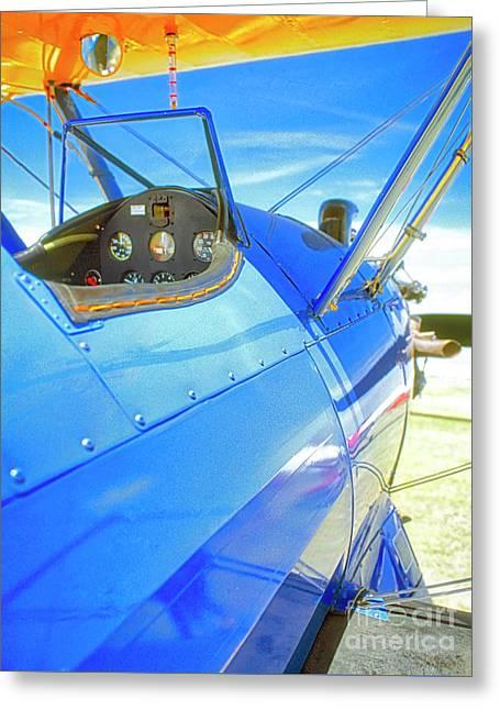 Blue And Yellow Bi Wing  Greeting Card
