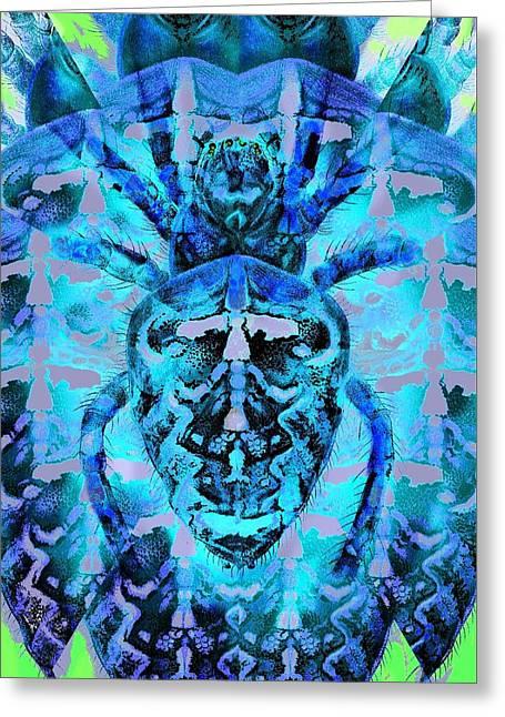 Blue Arachnid Greeting Card by Diane Addis
