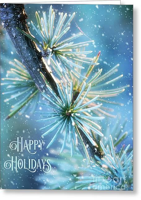 Blue Atlas Cedar Winter Holiday Card Greeting Card