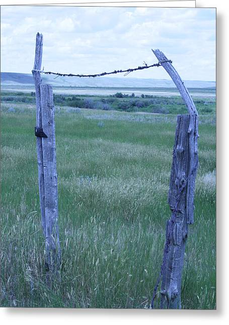 Blue Barbwire Greeting Card