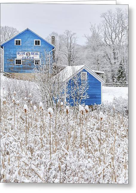 Blue Barns Portrait Greeting Card by Bill Wakeley