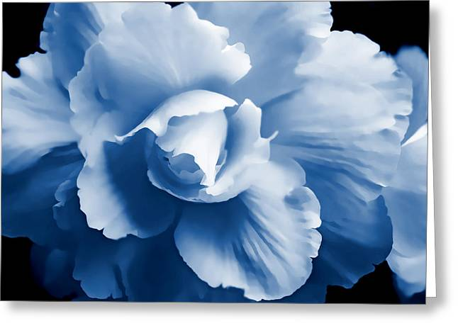 Blue Begonia Floral Greeting Card by Jennie Marie Schell
