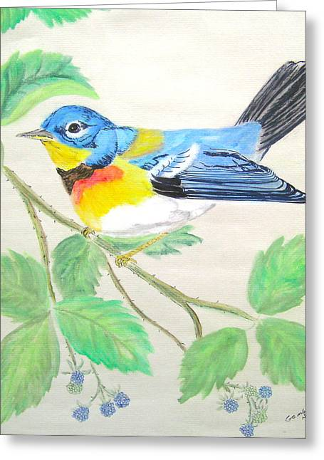Nancy Rucker Greeting Cards - Blue Bird of Happines  II Greeting Card by Nancy Rucker