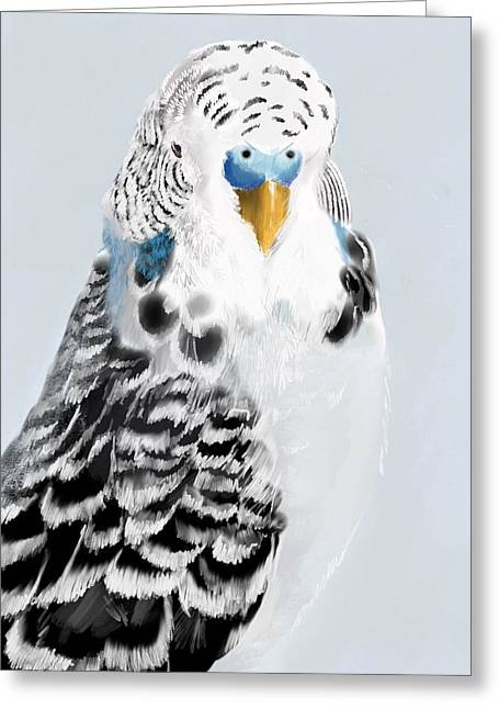 Blue Budgie Greeting Card