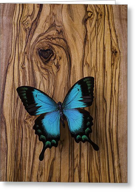 Blue Butterfly On Wood Grain Greeting Card by Garry Gay