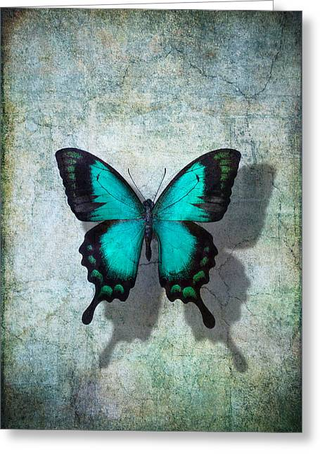 Blue Butterfly Resting Greeting Card