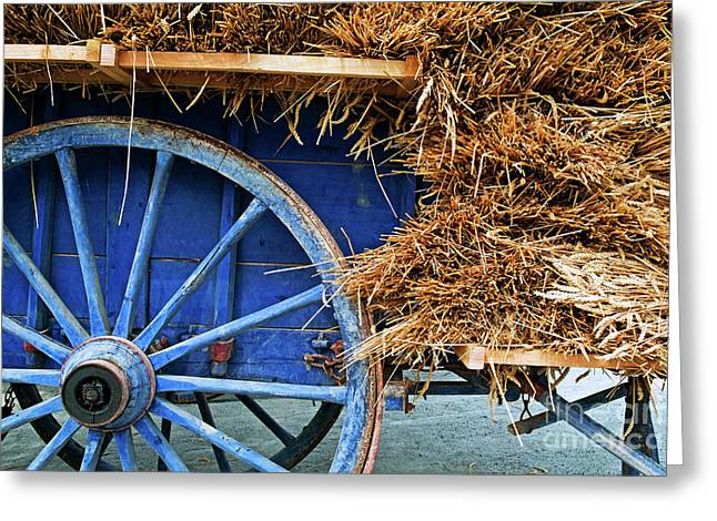 Wagon Wheels Greeting Cards - Blue cart full with load of straw Greeting Card by Sami Sarkis