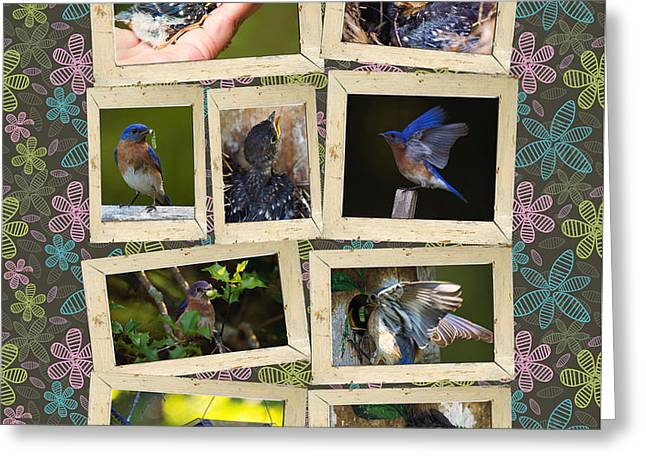 Greeting Card featuring the photograph Blue Collage by Angel Cher