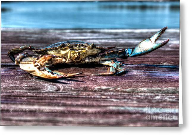 Blue Crab - Big Claws Greeting Card