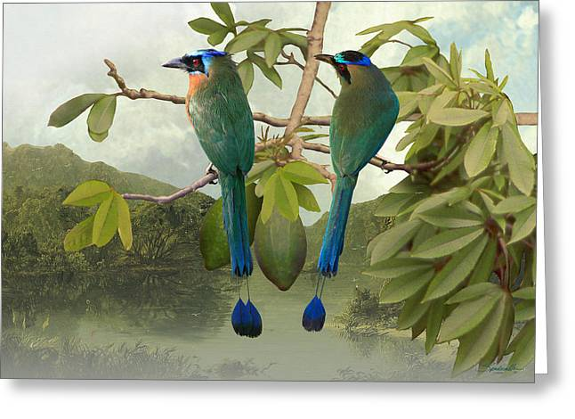 Blue-crowned Motmots In Kapok Tree Greeting Card