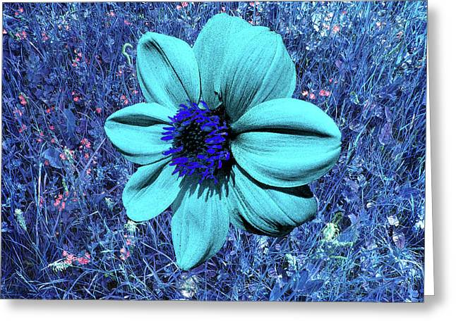 Blue Dahlia Abstract Greeting Card