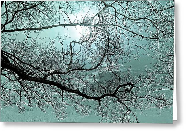 Blue Danube Greeting Card by Valerie Anne Kelly