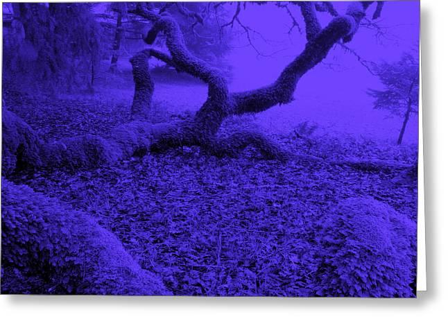 Blue Dreaming Moon Greeting Card by JoAnn SkyWatcher