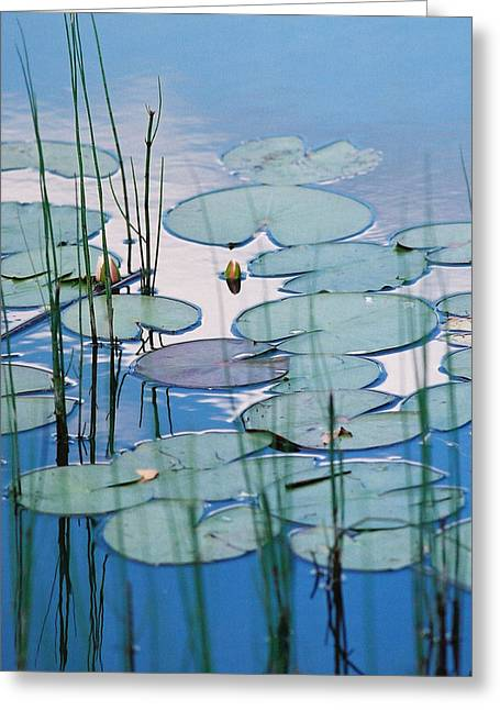 Blue Dreams Greeting Card by Doris Potter