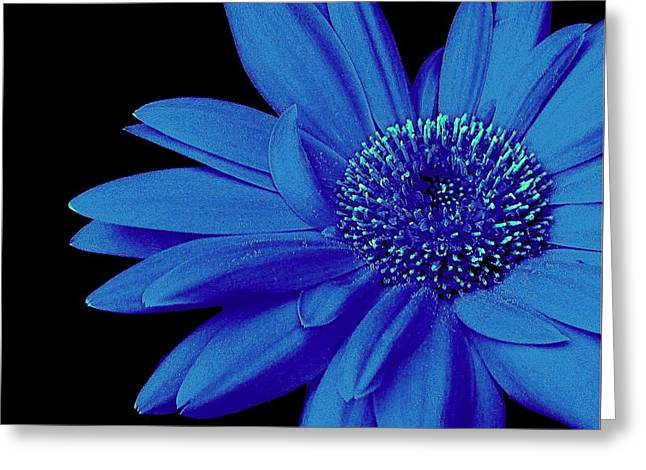 Blue Greeting Card by Elfriede Fulda