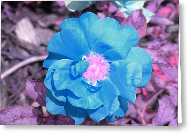 Blue Greeting Card by Evan Pullins