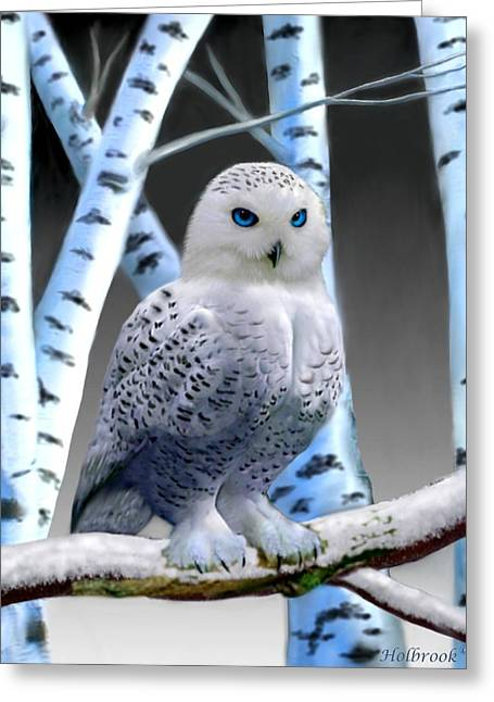 Blue-eyed Snow Owl Greeting Card